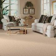 clean carpeting in living room