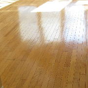 antibacterial floor finish on hardwood